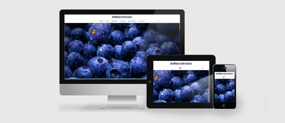 strona internetowa dla firmy produkcyjnej